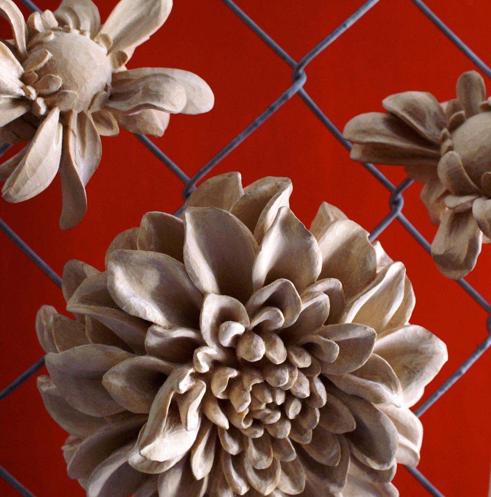 flowering_6